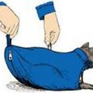 The Cat Sack Restraint with Rear Underside Zipper Nylon Blue Large (10-15 lbs)