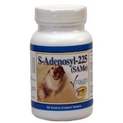 Adenosyl 225mg SAMe S-Adenosyl / L-Methonine Liver Support Bottle of 60