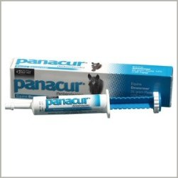 Panacur Paste Fenbendazole Equine Dewormer for Horses & Ponies