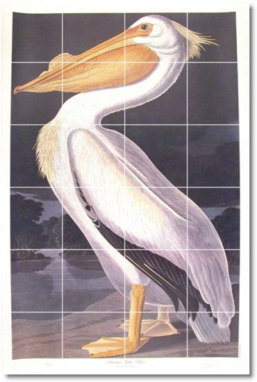 Audubon Birds Wall Tiles Room Renovations Design Commercial Idea