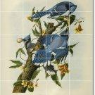 Audubon Birds Mural Room Tiles Contemporary Interior Renovations