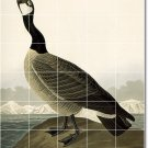 Audubon Birds Tiles Mural Room Interior Renovations Contemporary