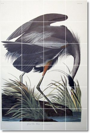 Audubon Birds Wall Kitchen Murals Backsplash Remodeling Interior