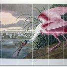 Audubon Birds Dining Room Wall Tiles Home Traditional Renovation