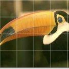 Birds Image Wall Kitchen Mural Tile Backsplash Design Remodeling