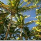 Tropical Image Backsplash Wall Tile Construction Residential Idea