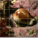 Underwater Image Room Tiles Floor Mural Remodeling Contemporary