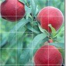 Fruits Vegetables Photo Dining Tile Room Floor Design Home Modern