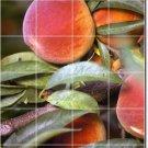 Fruits Vegetables Image Room Murals Wall Living Ideas Renovations