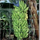 Fruits Vegetables Picture Living Floor Murals Room Home Art