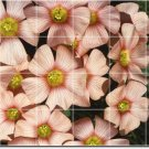 Flowers Image Tile Dining Mural Room Design Renovations Interior