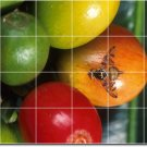 Fruits Vegetables Photo Bedroom Wall Tile Ideas Renovations House