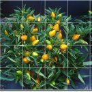 Fruits Vegetables Photo Room Tiles Mural Ideas Remodel Commercial