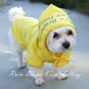 Dog Designer Raincoat XS-XL Jacket Adjustable Hood