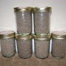 Pre-Sterilized Mushroom Substrate Jars 6 Pack