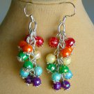 Rainbow Chakra Faceted Bead Cha Cha Earrings