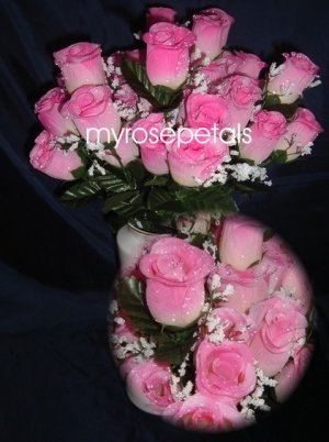 84 Silk Rose Flowers with Raindrops-Wedding Roses Flowers - Ivory/TWO Pinks