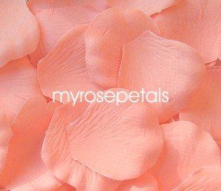 Petals - 1000 Silk Rose Petals Wedding Favors - Solid Colors - Apricot