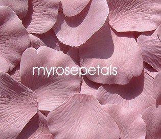 Petals - 1000 Silk Rose Petals Wedding Favors - Solid Colors - Dusty Rose