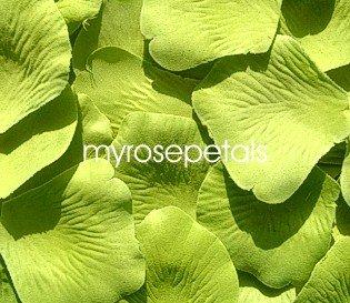 Petals - 1000 Silk Rose Petals Wedding Favors - Solid Colors - Lime Green