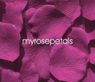 Petals - 1000 Silk Rose Petals Wedding Favors - Solid Colors - Raspberry