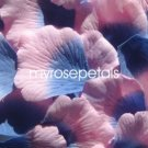 Petals - 1000 Silk Rose Petals Wedding Favors -  Two Tone - Blue/Pink