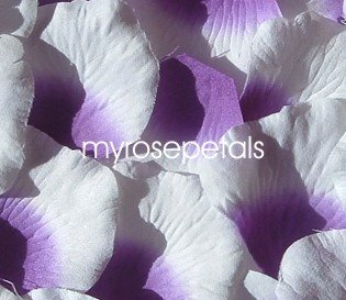 Petals - 1000 Silk Rose Petals Wedding Favors -  Two Tone - Purple/White