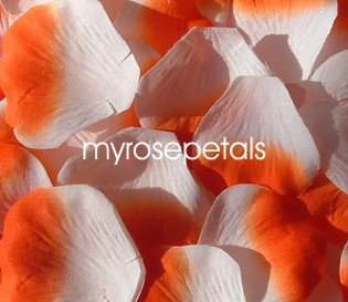 Petals - 1000 Silk Rose Petals Wedding Favors -  Two Tone - White/Orange