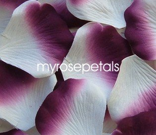 Petals - 1000 Silk Rose Petals Wedding Favors -  Two Tone - White/Plum
