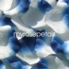 Petals - 1000 Silk Rose Petals Wedding Favors -  Two Tone - White/Royal Blue