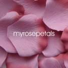 Petals - 200 Silk Rose Petals Wedding Favors -  Two Tone - Dusty Rose/Rose