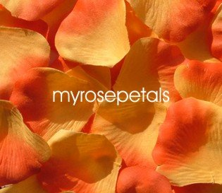 Petals - 200 Silk Rose Petals Wedding Favors -  Two Tone - Light/Dark Orange