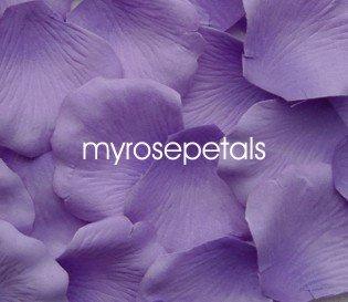 Petals - 200 Silk Rose Petals Wedding Favors -  Two Tone - Light/Dark Purple