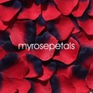 Petals - 200 Silk Rose Petals Wedding Favors -  Two Tone - Red/Navy Blue
