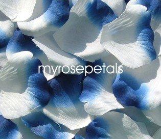 Petals - 200 Silk Rose Petals Wedding Favors -  Two Tone - White/Royal Blue