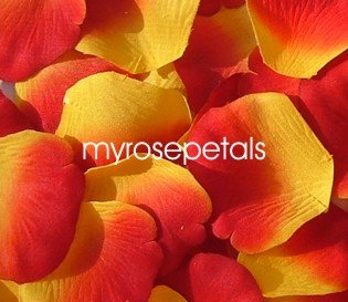 Petals - 200 Silk Rose Petals Wedding Favors -  Two Tone - Yellow/Red