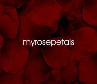 Petals - 200 Silk Rose Petals Wedding Favors - Solid Colors - Burgundy