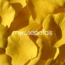 Petals - 200 Silk Rose Petals Wedding Favors - Solid Colors - Yellow