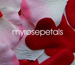 Petals - 200 Heart Wedding Silk Rose Flower Petals Wedding Favors - Burgundy