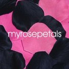 Petals - 200 Wedding Silk Rose Flower Petals Wedding Favors - Black & Hot Pink