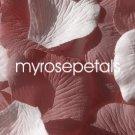 Petals - 200 Wedding Silk Rose Flower Petals Wedding Favors - Dusty Rose & White