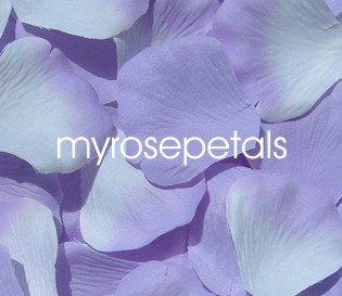 Petals - 200 Wedding Silk Rose Flower Petals Wedding Favors - Lavender & White/Lavender