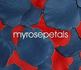 Petals - 200 Wedding Silk Rose Flower Petals Wedding Favors - Periwinkle & Red