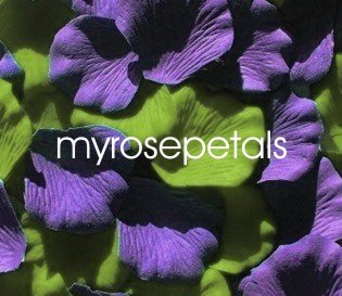 Petals - 200 Wedding Silk Rose Flower Petals Wedding Favors - Purple & Lime Green