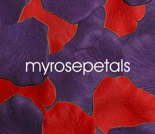 Petals - 200 Wedding Silk Rose Flower Petals Wedding Favors - Purple & Red