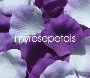Petals - 200 Wedding Silk Rose Flower Petals Wedding Favors - Purple & White/Lavender