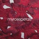 Petals - 1000 Butterfly Shaped Silk Rose Flower Petals Wedding Favors - Burgundy