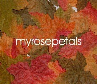 Petals - 1000 Maple Leaf Silk Rose Flower Petals Wedding Favors - Mixed Color