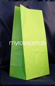 Paper Favor Treat Goody Luau Party Gift Bags - Lime Green (12 Bags)