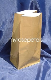 Paper Favor Treat Goody Luau Party Gift Bags - Gold (10 Bags)